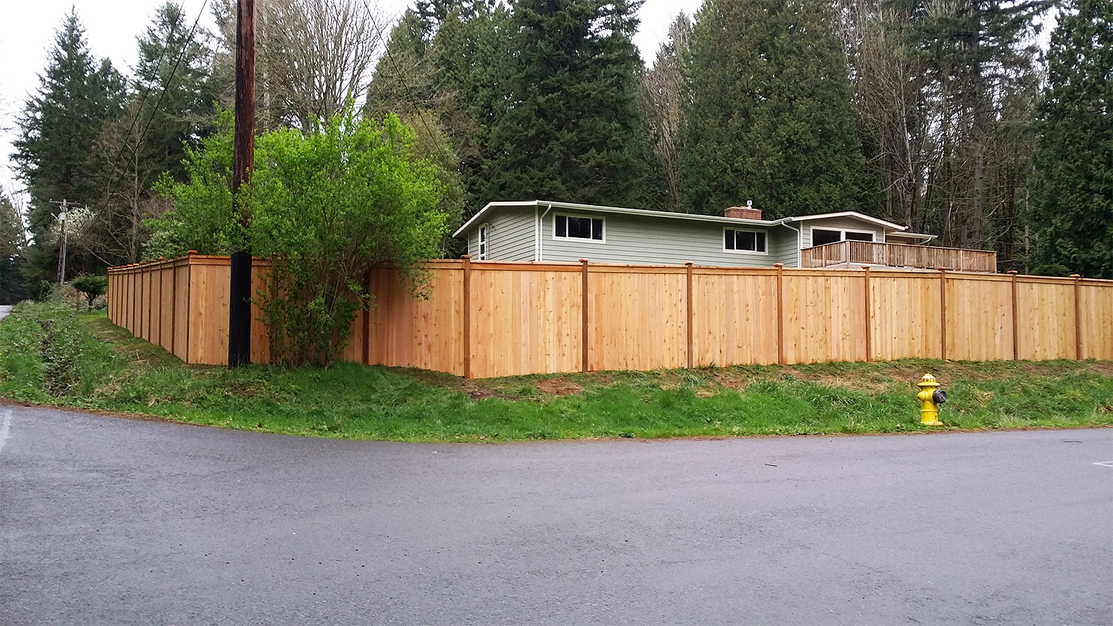 6ft Tall Cedar Panel Fence with 2x4 Cap and Trim